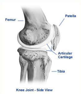 """My Knee """"Pops"""" In & Out of Place! Patellar Instability"""